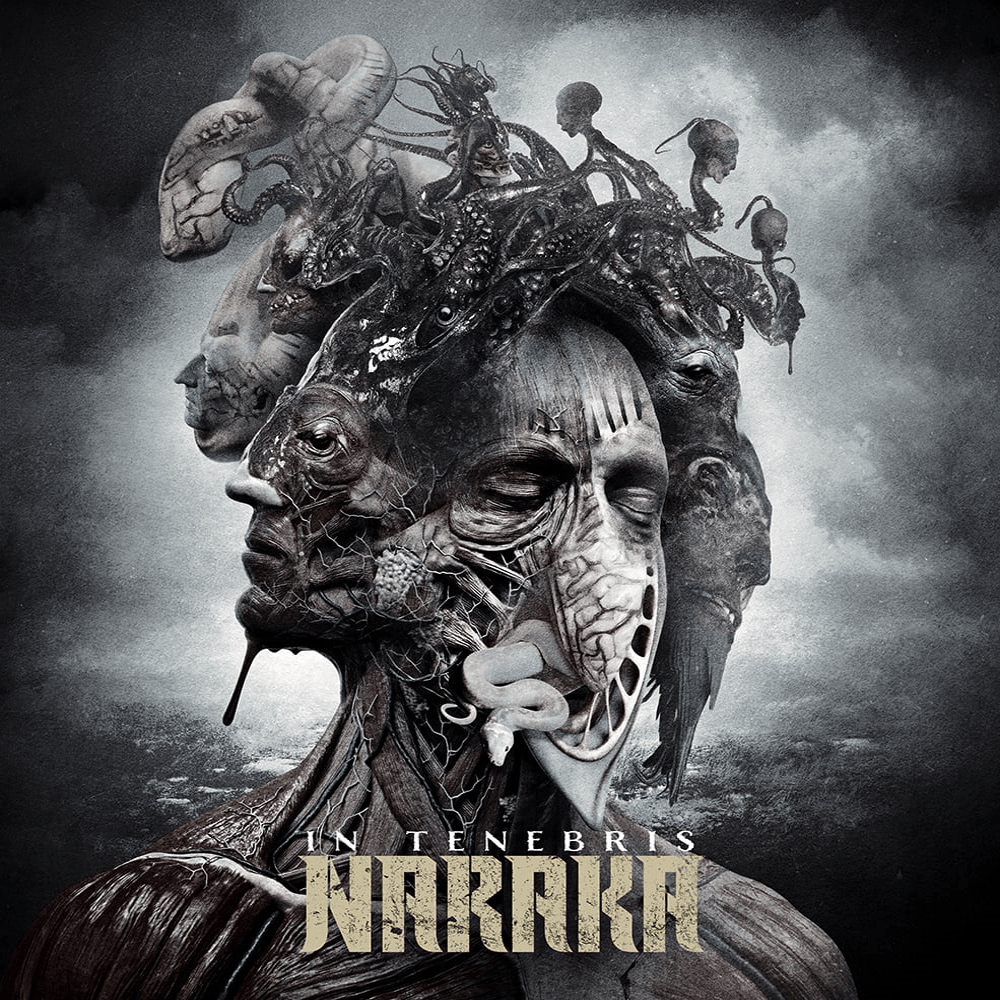 naraka artwork