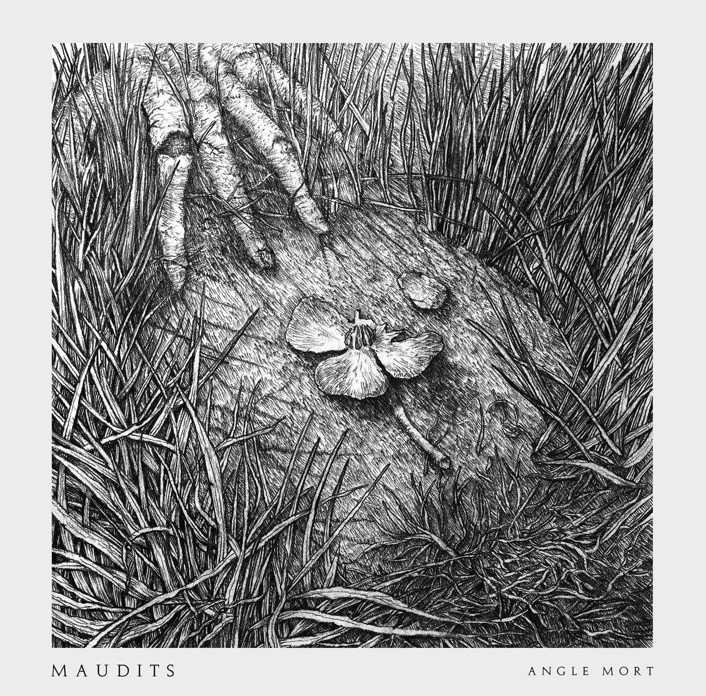 Magnifique gravure de ce nouvel album, avec la fleur emblématique du groupe.